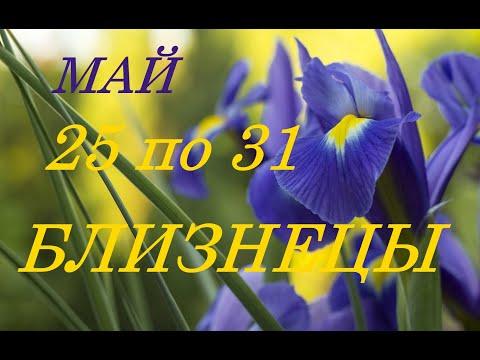 БЛИЗНЕЦЫ. ТАРО-ПРОГНОЗ на НЕДЕЛЮ с 25 по 31 МАЯ 2020 г.