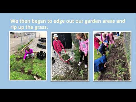 Precious Blood Catholic School, Exeter - Watershed Champion Grant Project 2019