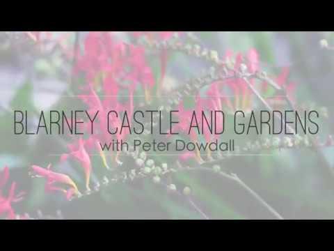 The Irish Gardener, Peter Dowdall visits the amazing gardens at Blarney Castle in Co Cork, Ireland