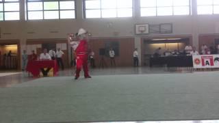 Wushu DM Manuel Bickel SD