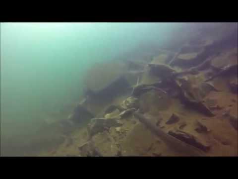 Patriot Scuba Videos | Rappahannock Eel Video 4 July 2013