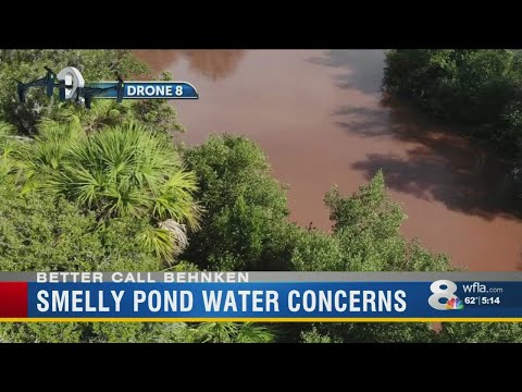 Deuce - New Port Richey Residents Fed Up With Brown, Foul Smelling Pond