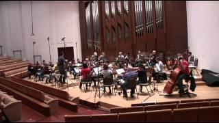 Leopold Koželuh Sinfonia in D