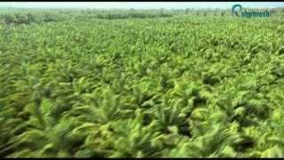 شركه العقاريه Rakomesko  للبيع ارضي الكونغو الديمقراطيه