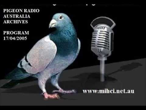Pigeon Radio Australia Archive - Program Sunday 17/04/2005
