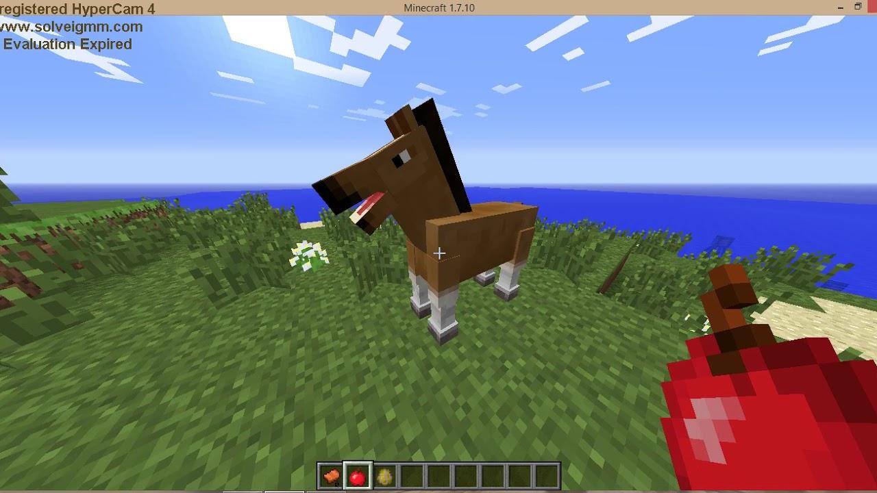 Как приручить лошадь в майнкрафте 1.8.9
