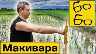 Работа на макиваре с Виктором Панасюком — цели и методика тренировки ударов на макиваре
