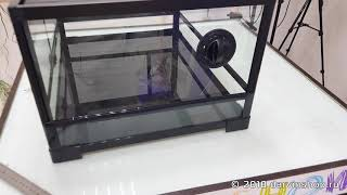 Обзор террариума ReptiZoo 60x45x30