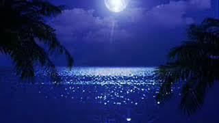 夏の夜の歌 ナンバー1ソングです。 麻丘めぐみさんの隠れた名曲です。 ...