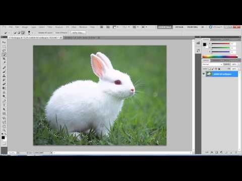 Grafik Tasarım Kursu Eğitimi Videosu - photoshopta dekupe