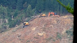 Self leveling winch assisted log mover working on a steep slope, Nelson NZ