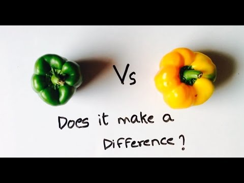 What is the difference between Green,Yellow and Red Capsicums/Bell peppers?