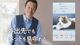 遠藤憲一Panasonic「在家輕鬆地用手機操控DIGA」「屋內轉動鏡頭看顧寵物...