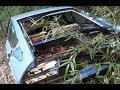 Alfa Romeo Alfetta GT(?) e Simca 1301 disperse in un bosco...