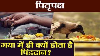Pitru Paksha: Pind Daan Vidhi at Gaya | जानिए गया में ही क्यों होता है पिंडदान? | Boldsky