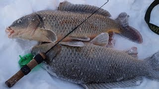 Рыбалка на леща зимой