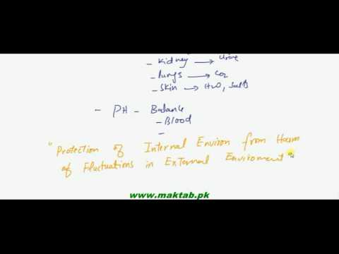 FSc Biology Book2, CH 15, LEC 1: Concept Of Homeostasis
