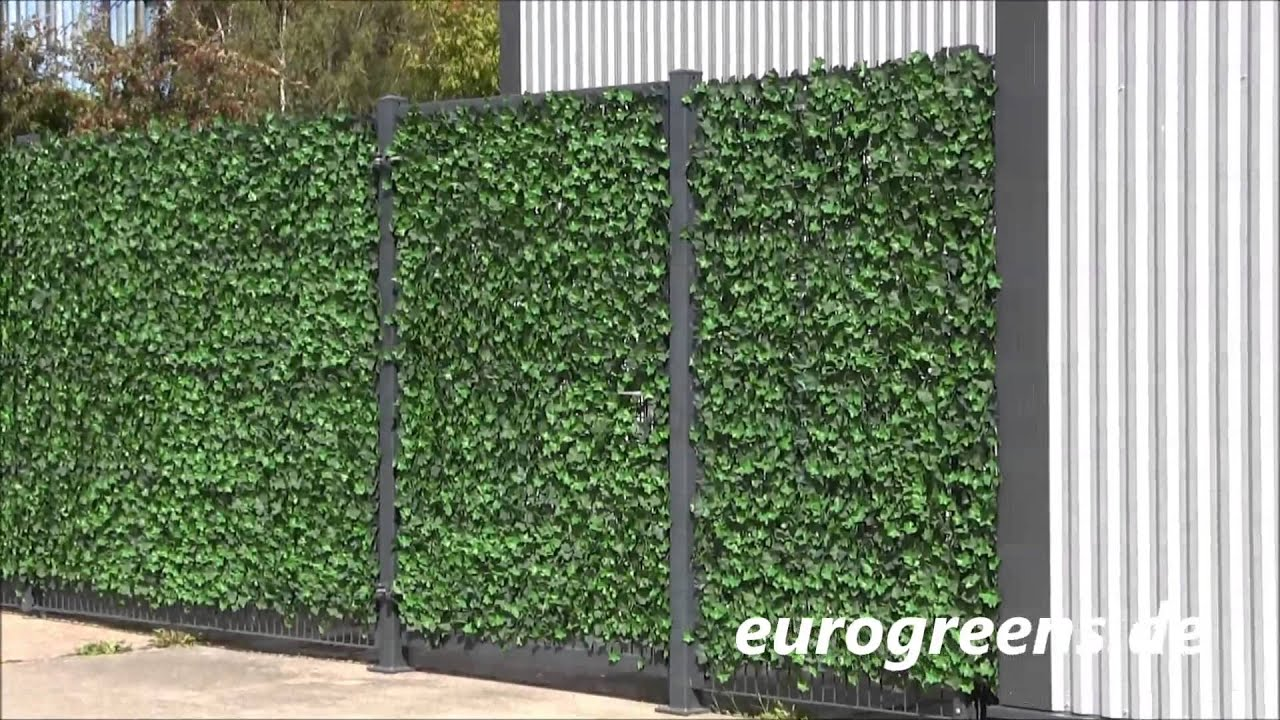 eurogreens kunstpflanzen efeu hecke youtube. Black Bedroom Furniture Sets. Home Design Ideas