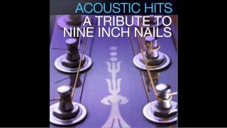 "Nine Inch Nails ""Ringfinger"" Acoustic Hits Cover Full Song"