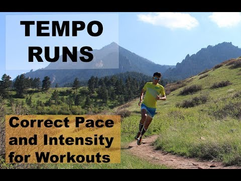 Tempo Run Workouts: Correct Pace and Intensity | Sage Running Training Tips