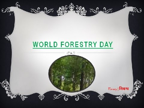 World Forestry Day: 21 March | An Essay on International Forestry Day in English Language