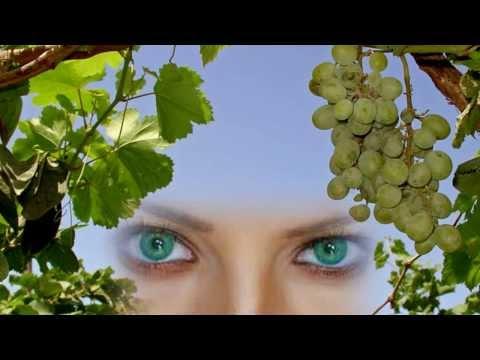 у любви глаза зеленые текст песни. Скачать песню Эдуард Изместьев - У моей любви глаза зеленые