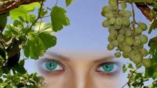 У моей любви Глаза Зелёные Эдуард Изместьев