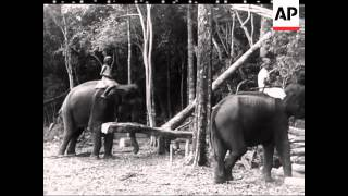 INDIAN MOVIETONE NEWS (SOUND - INDIAN COMMENTARY)