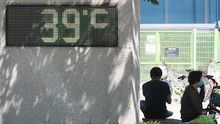 연일 기세 올리는 폭염…오늘 더 더워, 서울 37도 /…