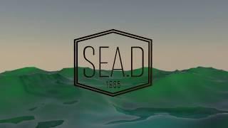 릴레이인터뷰. 첫주자 #Sea.D씨드 박혜라 대표 인터…