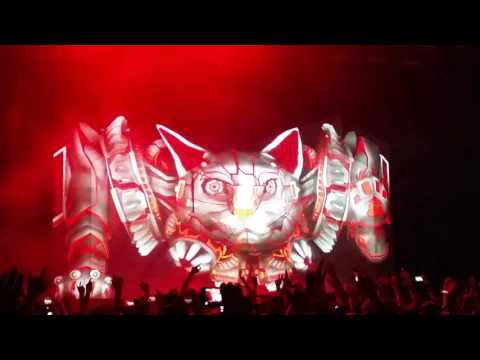 Excision & Downlink - Robo Kitty (live bootleg)