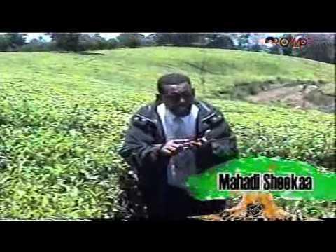 Mahdi Sheka - Dharri gooba baase (Oromo Music)