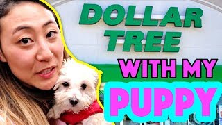 DOLLAR TREE WITH MY PUPPY 🐶!! (I Let My Puppy Buy Anything She Wants)
