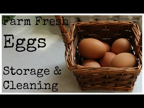 Farm Fresh Eggs - Storage and Cleaning
