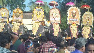 CHEMBOOTHRA MAKARA CHOWWA/Get together of DESA DEVANS  from 48  desoms/star elephants