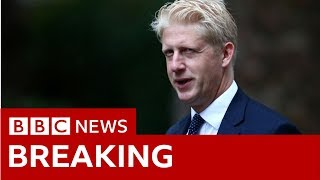 PM's brother quits as Tory MP and minister - BBC News