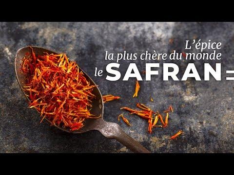 Le Safran : l'épice la plus convoitée du monde