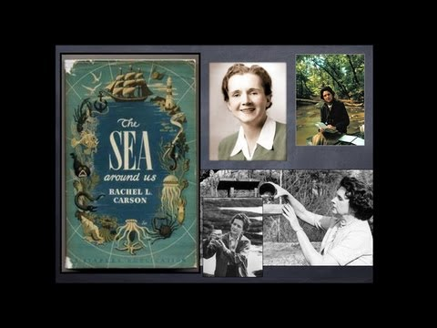 Rachel Carson's Legacy: The Silent Spring Series - Exploring Ethics