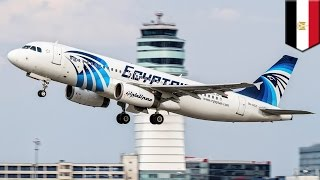 EgyptAir flight 804: plane likely brought down by terrorists, experts say - TomoNews