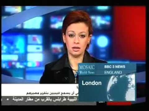 Mosaic News - 04/13/11: New Syria Protests