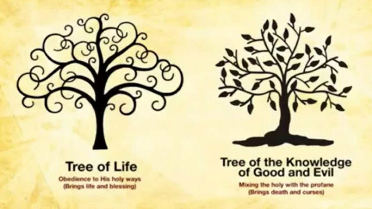 The eternal choice the tree of life vs the tree of for What is the meaning of the tree of life jewelry