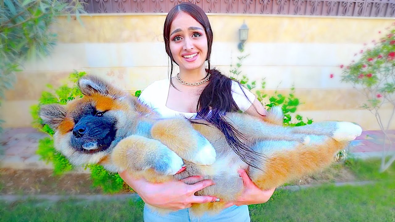 He bought the World's Biggest Puppy !!!