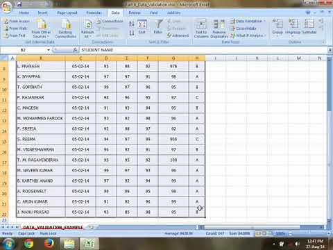 Excel basic tamil-Cell style, find & replace, data validation, advance filters, pivot table part-2/4