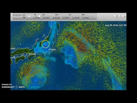 Lionrock and Mindulle and Magnetic Typhoon Japan