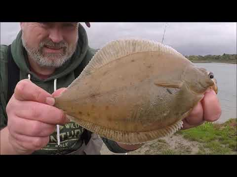 Shore Fishing Essex; Canewdon.