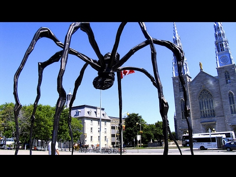 HOT NEWS Traveling In Ottawa