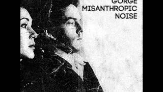 Misanthropic Noise - Split 10 w/ Violent Gorge [2014]