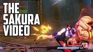 SFV: Arcade Edition Sakura Combo Video!
