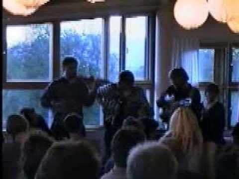 Swedish Folk Music with Fiddle, Accordion, and Guitar