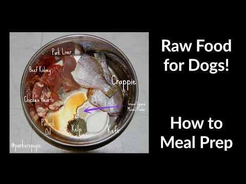 How I Meal Prep Raw Food for Dogs